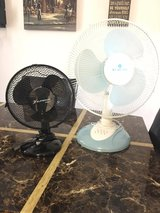 Two Fans in Ansbach, Germany