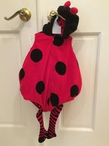 Halloween costume - Infant Lady Bug in Chicago, Illinois