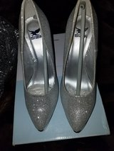 Silver shoes in Morris, Illinois