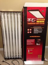 Hydrofarm T5 4Ft/6 Bulb Designer System Indoor Growing Lights in Naperville, Illinois