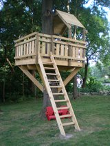 Tree House & or Backyard Play Structure in Todd County, Kentucky