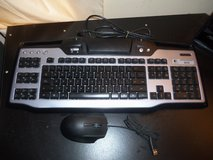 Keyboard and mouse in Fort Knox, Kentucky