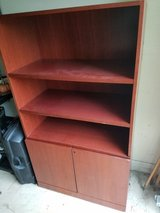Great office or entertainment bookcases in Naperville, Illinois