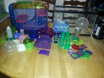 HAMSTER LOT. need gone asasp in Oceanside, California