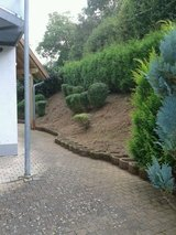 Landscaping & Lawn Care Service&Free Estimate in Ramstein, Germany