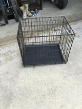 Dog crate in Oceanside, California