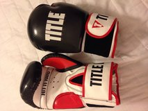 Boxing gloves in Tampa, Florida