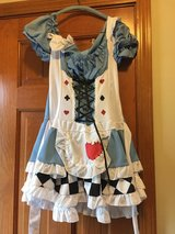 Adult Alice in Wonderland Miss Wonderland Costume in Naperville, Illinois