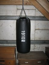 Punching Bag in Bolingbrook, Illinois
