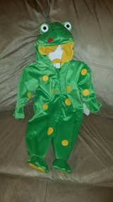 Frog Costume in Bolingbrook, Illinois
