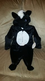 Skunk Costume in Oswego, Illinois