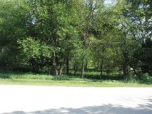 One Acre vacant wooded lot for sale 2607 Poplar View Bend, Elgin, IL. in Elgin, Illinois
