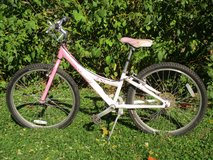 Girls Pink Trek Bike 24 inch reduced in Lockport, Illinois