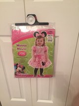 Minnie Mouse Costume in Tinley Park, Illinois
