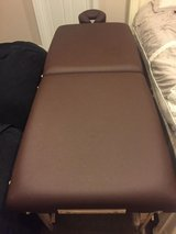 Earthlite massage table with bolster and carrying bag in Aurora, Illinois