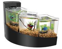 Aqueon aquarium Betta Falls fish tank in Oceanside, California