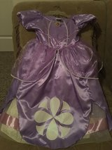 Sofia the 1st Dress in Fort Bliss, Texas