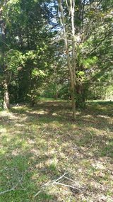 1 acre in city limits in Coldspring, Texas