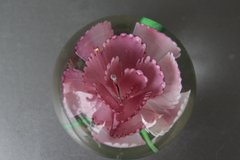 Glass Ball with Flower inside in Fairfield, California