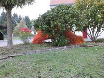 NO FEE - Beautiful Townhouse in charming village in Baumholder, GE