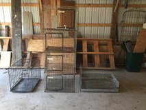 Metal Animal Cages in Fort Leonard Wood, Missouri