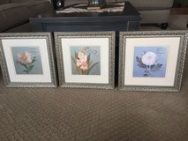 Pretty Floral Pictures in Joliet, Illinois