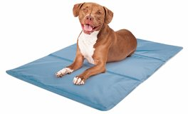 Rest Ology 2-Sided Blue Stay Cool Gel Technology Pet Mat - Large in St. Charles, Illinois