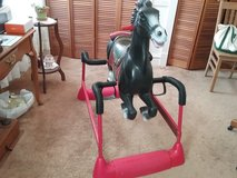 Hedstrom Spring Rocking Horse in Elgin, Illinois