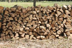 Ash Firewood in DeRidder, Louisiana