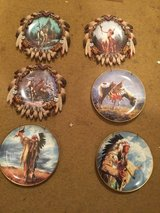 Native American collector plates in Naperville, Illinois