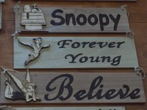 Wood Burned Peter Pan, Snoopy Signs in 29 Palms, California
