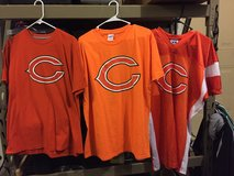 Chicago bears in Bellevue, Nebraska