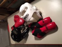 Youth Sparring Gear in Houston, Texas
