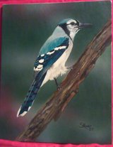 Blue Jay - original painting in Cherry Point, North Carolina