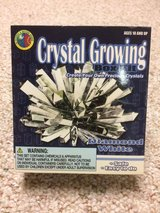 Grow your own crystal kit in Lockport, Illinois