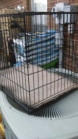 large kennel in Lawton, Oklahoma