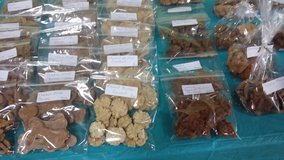 Healthy Homemade Dog Treats in Lake Charles, Louisiana