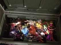 Over 100 dolls in Columbia, South Carolina