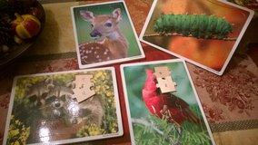 wood puzzles in Naperville, Illinois