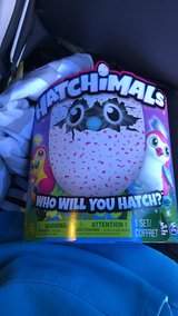 (1) Penguala Hatchimals in bookoo, US