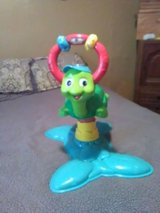 turtle play toy in Fort Campbell, Kentucky