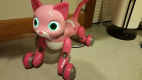 New Pink Zoomer Kitty in Fort Lewis, Washington