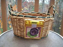Pansy Basket in Macon, Georgia