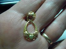 LOST EARRING in Alamogordo, New Mexico