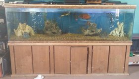 210 gal fish tank/stand, fish, and decor in Duncan, Oklahoma
