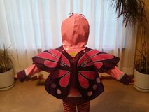 Butterfly Raincoat (4) antennae are missing in Joliet, Illinois
