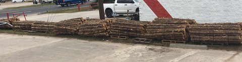 Cedar Fence Posts for sale. Free Shipping! in bookoo, US
