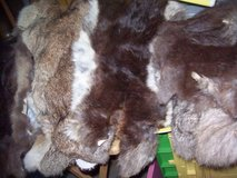 9 pieces Fur in Ramstein, Germany