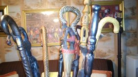 African Cane in Pearland, Texas