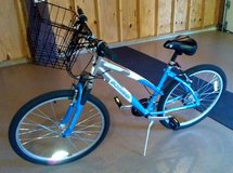 Schwinn Cimarron 21-Speed - $145 OBO in Bolingbrook, Illinois